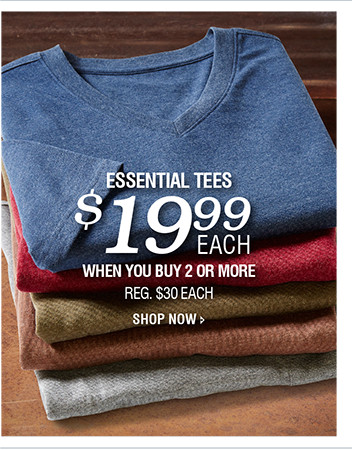 ESSENTIAL TEES | $19.99 EACH WHEN YOU BUY 2 OR MORE | SHOP NOW