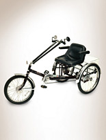 Worksman® Unisex 3-Speed Tricycle