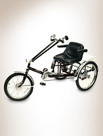 Worksman® Unisex 3-Speed Tricycle