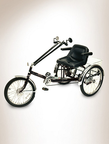 Worksman® Unisex 3-Speed Tricycle - $1599.95