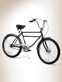 Worksman® Men's Deluxe 1-Speed Bicycle