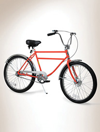Worksman® Men's Deluxe 1-Speed Bicycle