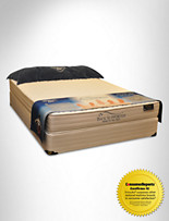 Spring Air® Back Supporter® Sensible Twin Exclusive Mattress Set