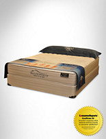 Spring Air® Back Supporter® Savvy Queen Exclusive Mattress Set