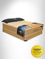 Spring Air Back Supporter® Masterful Twin Exclusive Mattress Set