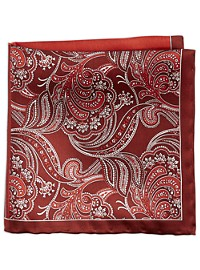 Rochester Designed in Italy Paisley Stripe Pocket Square